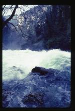 The River Sorgue in Spate